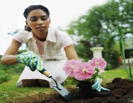 plantas en jardines pequeños