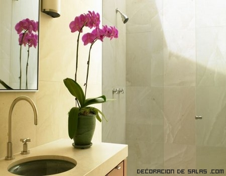 Elimina las manchas de agua y cal - Eliminar cal agua ...