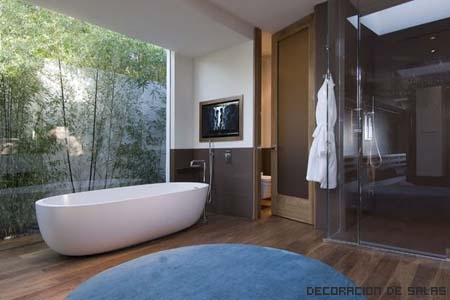 bañera con tv