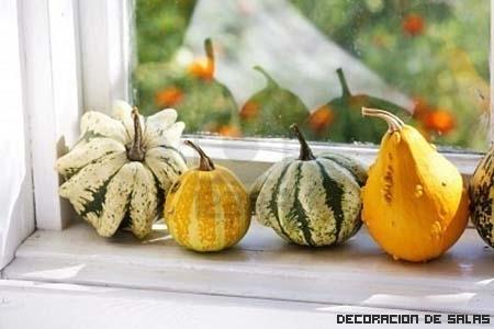 Ideas originales para el alfeizar de la ventana