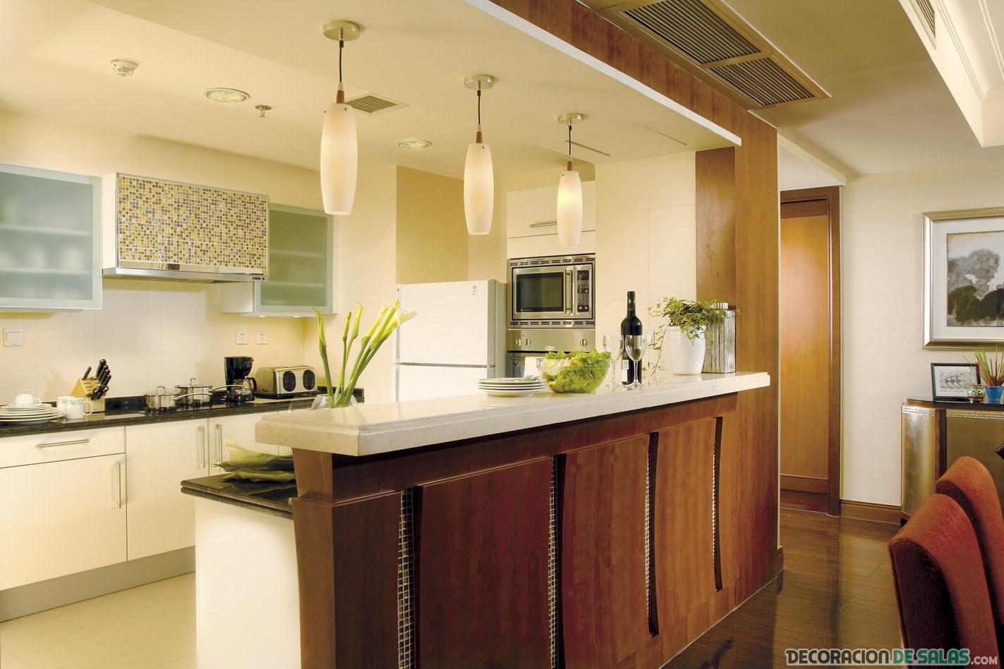 Ideas de cocinas abiertas for Cocinas elegantes