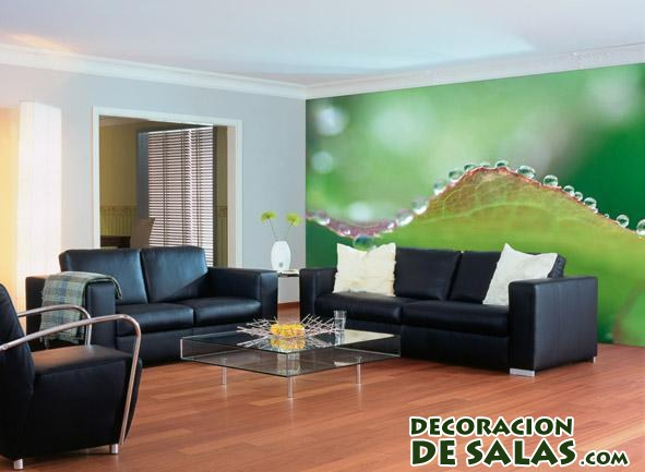 decoracion natural salon