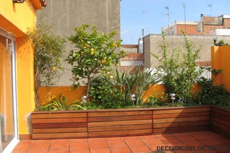jardineras plantas