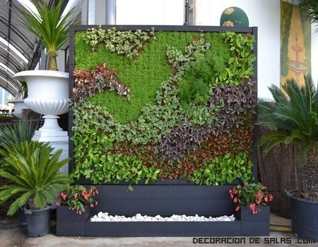 Jardines verticales en tu casa