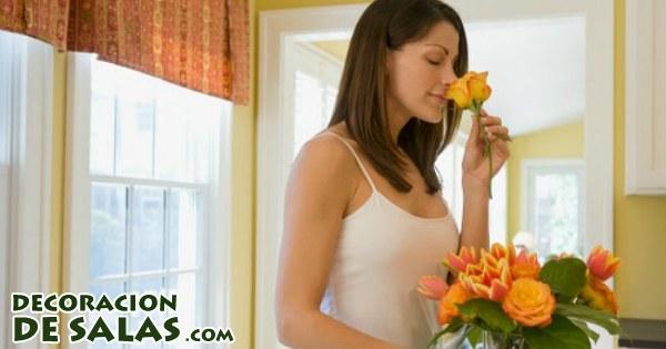 Perfuma tu casa