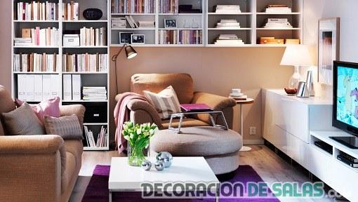 sala pequeña con librería