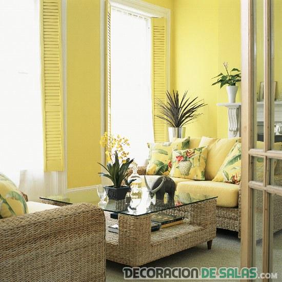 salón amarillo con plantas