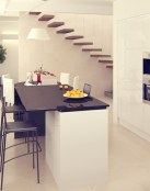 Cocinas combinadas de blanco y negro