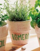 Plantas poderosas para casa